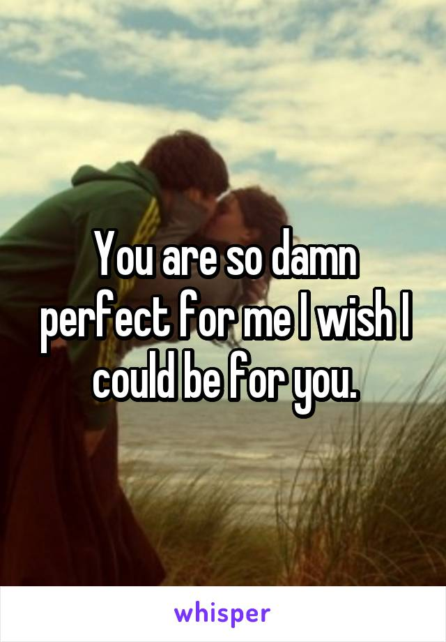 You are so damn perfect for me I wish I could be for you.