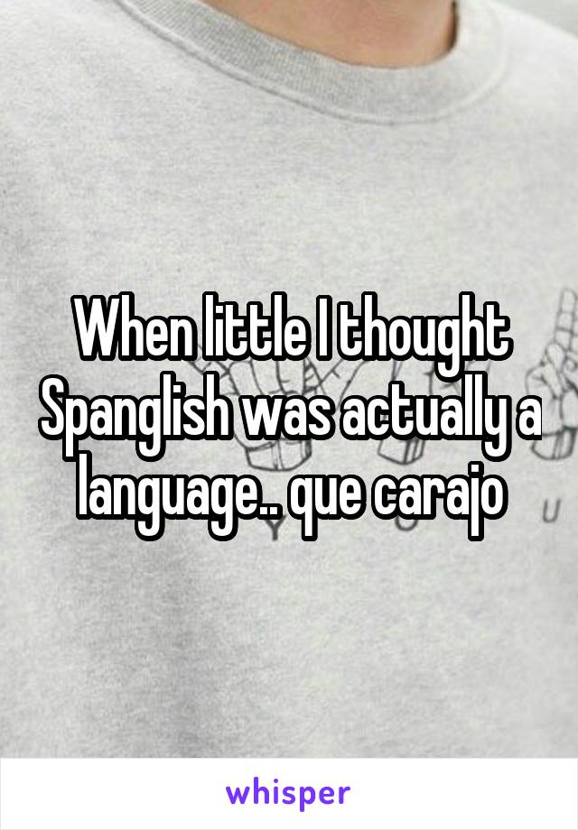 When little I thought Spanglish was actually a language.. que carajo