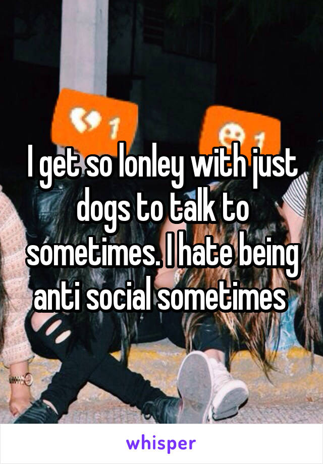 I get so lonley with just dogs to talk to sometimes. I hate being anti social sometimes