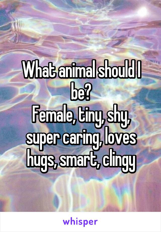 What animal should I be? Female, tiny, shy, super caring, loves hugs, smart, clingy