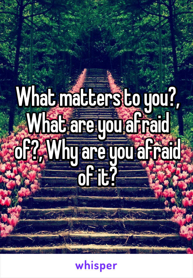 What matters to you?, What are you afraid of?, Why are you afraid of it?