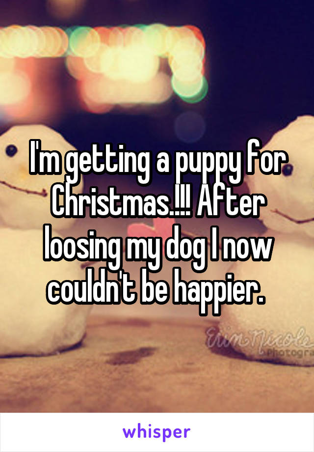 I'm getting a puppy for Christmas.!!! After loosing my dog I now couldn't be happier.