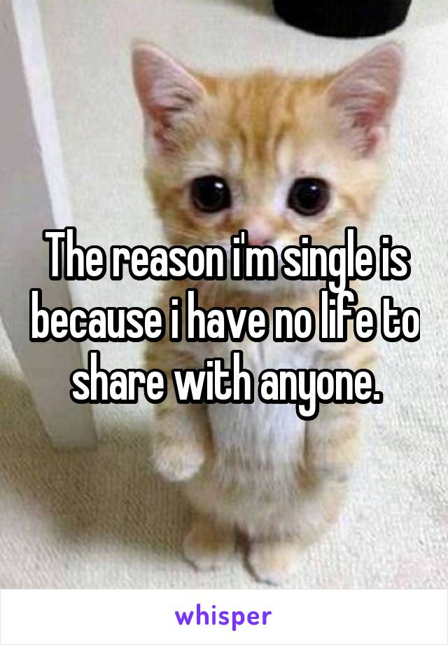 The reason i'm single is because i have no life to share with anyone.