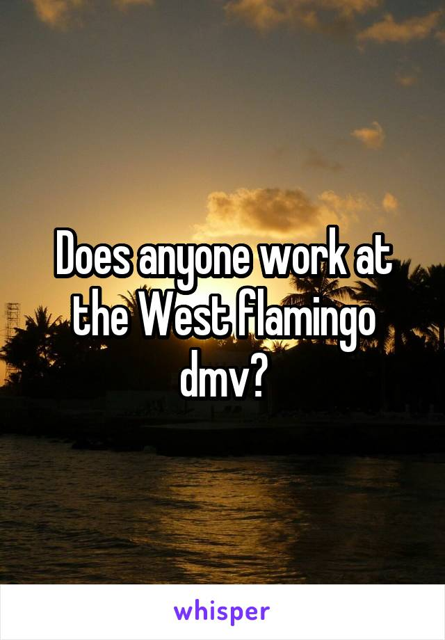 Does anyone work at the West flamingo dmv?