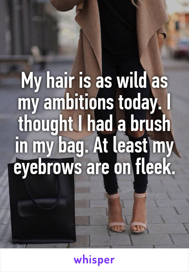 My hair is as wild as my ambitions today. I thought I had a brush in my bag. At least my eyebrows are on fleek.