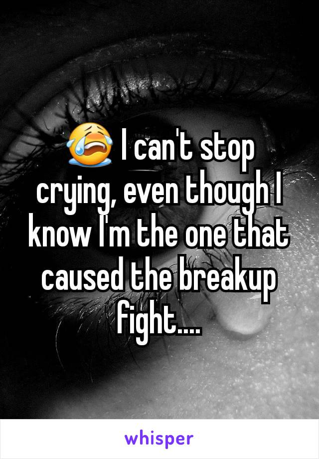 😭 I can't stop crying, even though I know I'm the one that caused the breakup fight....