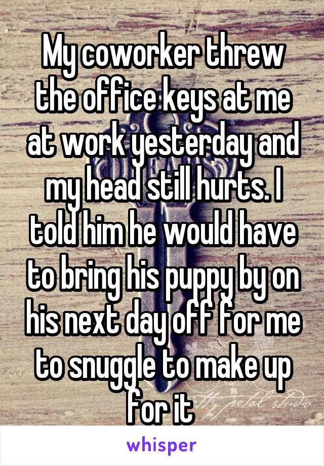 My coworker threw the office keys at me at work yesterday and my head still hurts. I told him he would have to bring his puppy by on his next day off for me to snuggle to make up for it