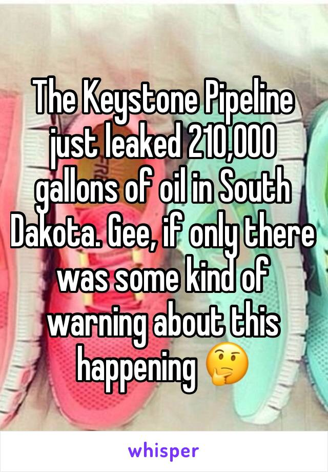 The Keystone Pipeline just leaked 210,000 gallons of oil in South Dakota. Gee, if only there was some kind of warning about this happening 🤔