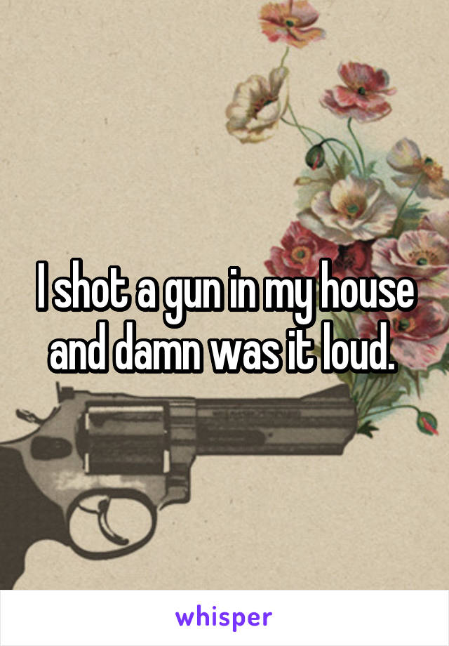 I shot a gun in my house and damn was it loud.