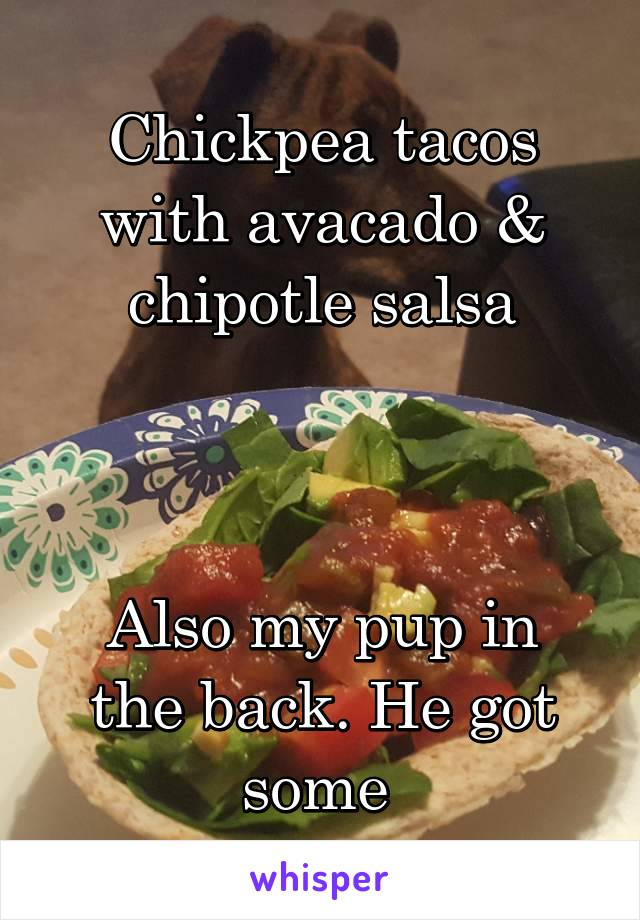 Chickpea tacos with avacado & chipotle salsa    Also my pup in the back. He got some