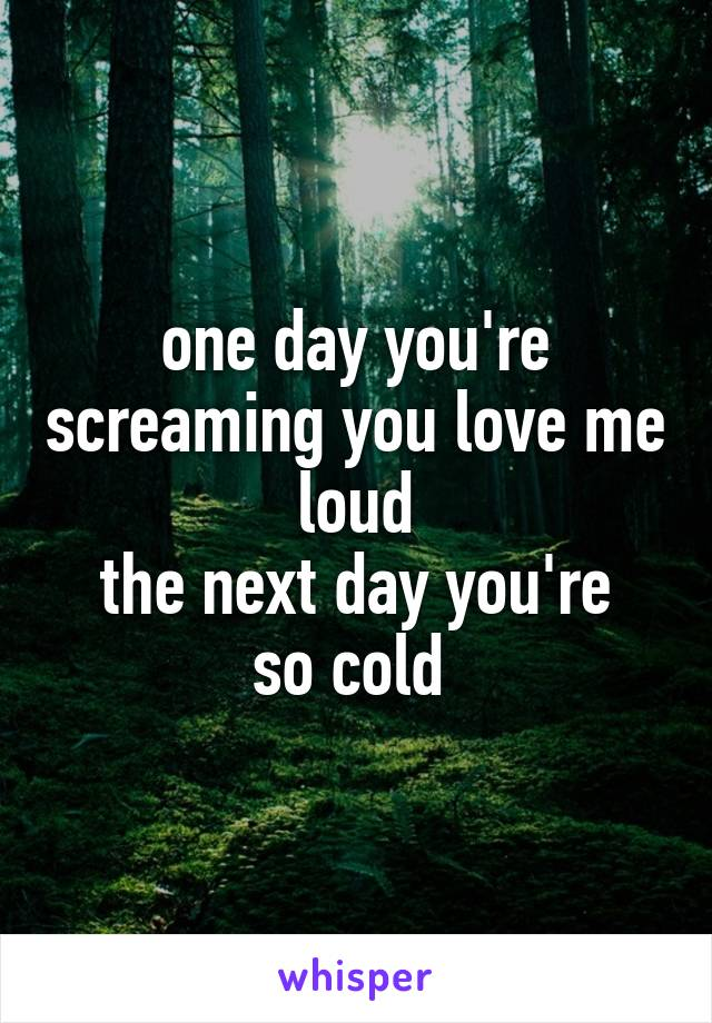 one day you're screaming you love me loud the next day you're so cold