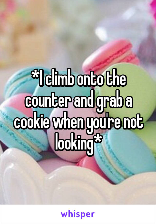 *I climb onto the counter and grab a cookie when you're not looking*