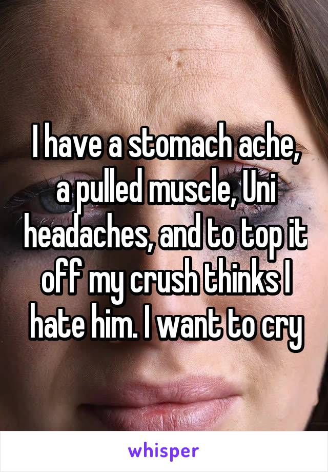 I have a stomach ache, a pulled muscle, Uni headaches, and to top it off my crush thinks I hate him. I want to cry