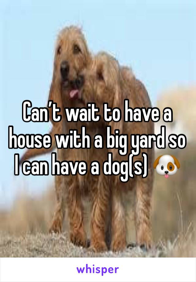 Can't wait to have a house with a big yard so I can have a dog(s) 🐶