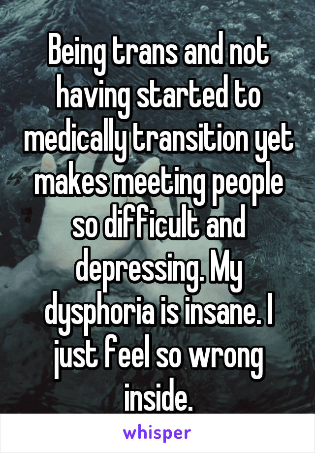 Being trans and not having started to medically transition yet makes meeting people so difficult and depressing. My dysphoria is insane. I just feel so wrong inside.