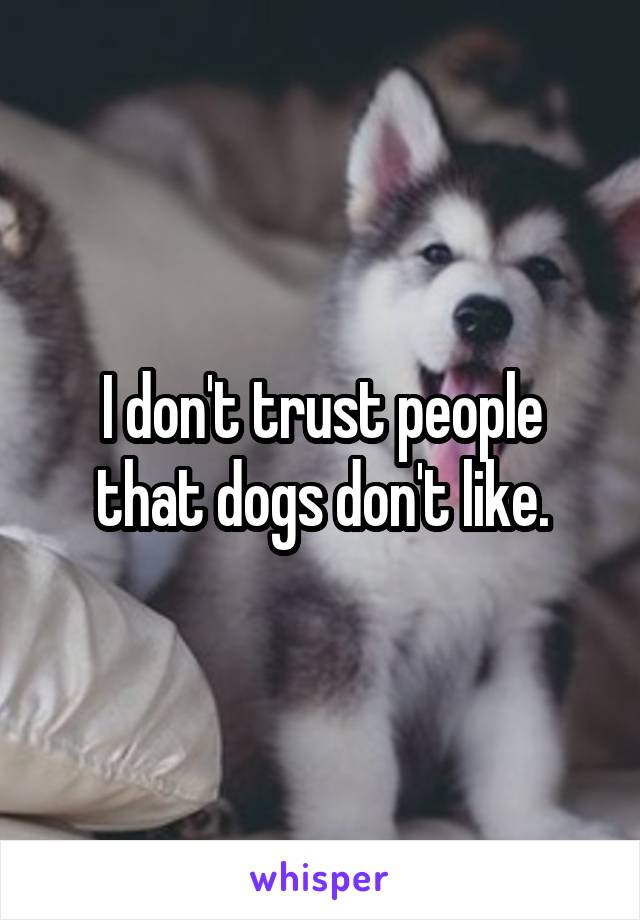 I don't trust people that dogs don't like.