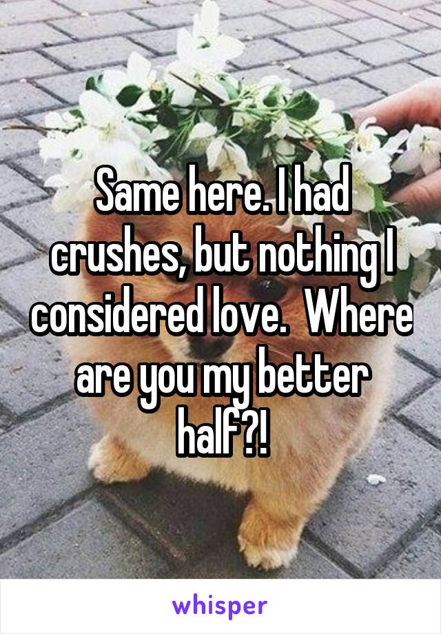 Same here. I had crushes, but nothing I considered love.  Where are you my better half?!