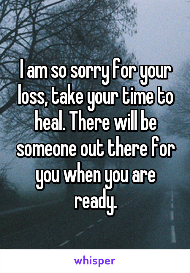 I am so sorry for your loss, take your time to heal. There will be someone out there for you when you are ready.