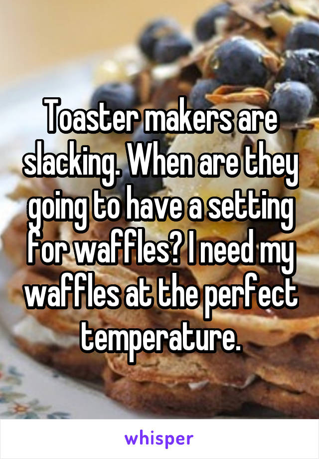 Toaster makers are slacking. When are they going to have a setting for waffles? I need my waffles at the perfect temperature.