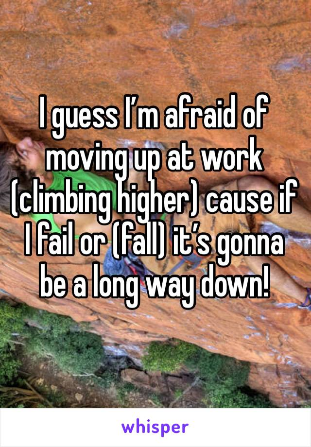 I guess I'm afraid of moving up at work (climbing higher) cause if I fail or (fall) it's gonna be a long way down!