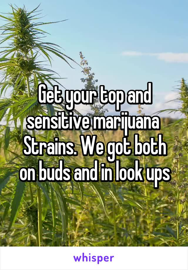 Get your top and sensitive marijuana  Strains. We got both on buds and in look ups