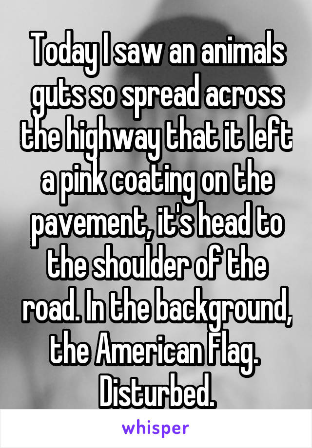 Today I saw an animals guts so spread across the highway that it left a pink coating on the pavement, it's head to the shoulder of the road. In the background, the American Flag.  Disturbed.