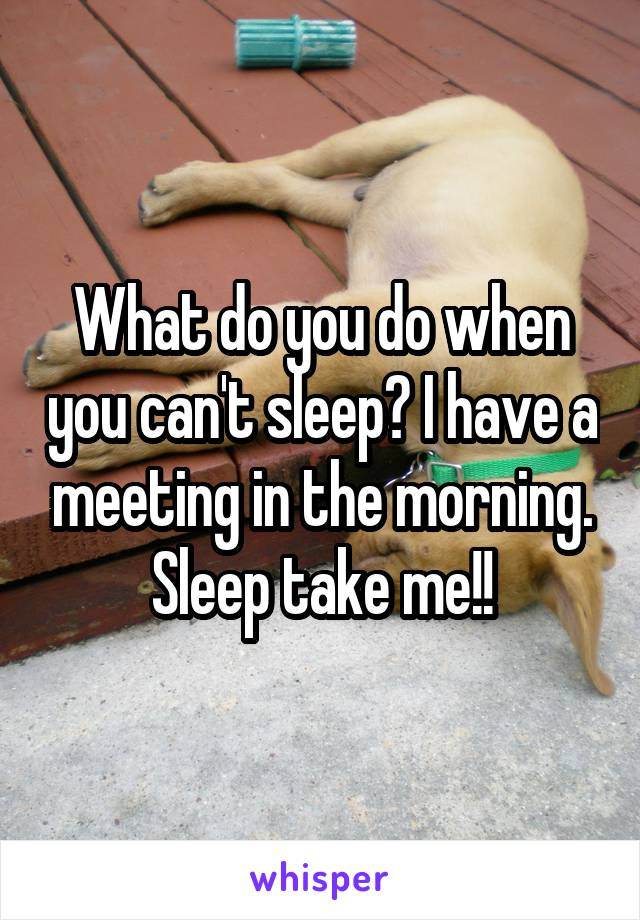 What do you do when you can't sleep? I have a meeting in the morning. Sleep take me!!