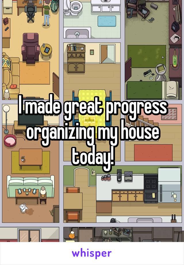 I made great progress organizing my house today!
