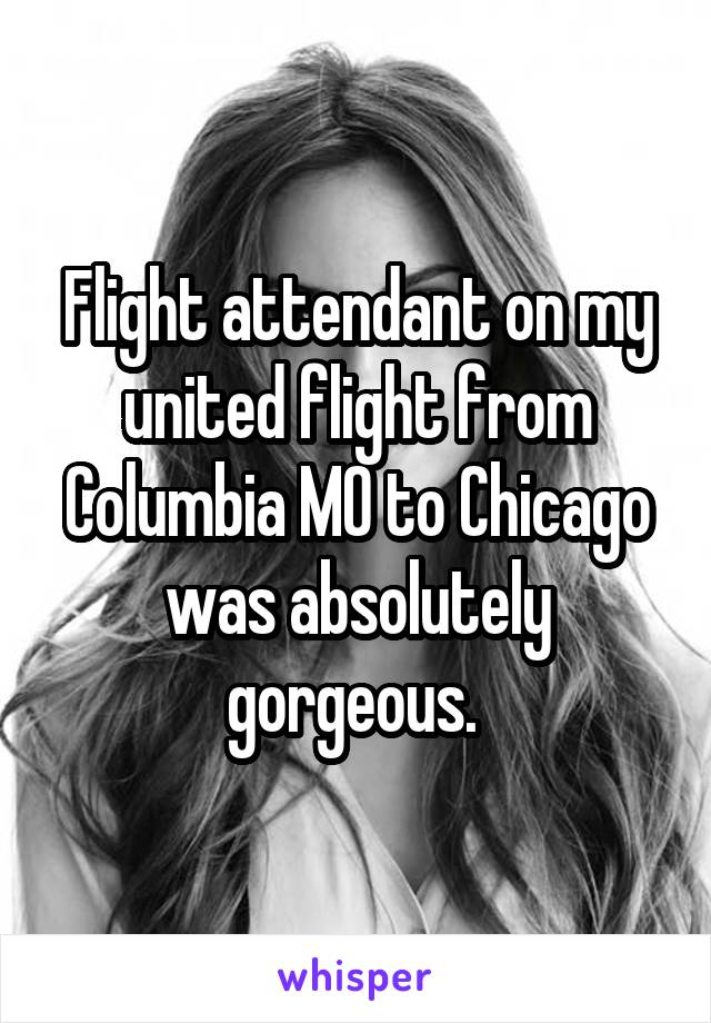 Flight attendant on my united flight from Columbia MO to Chicago was absolutely gorgeous.