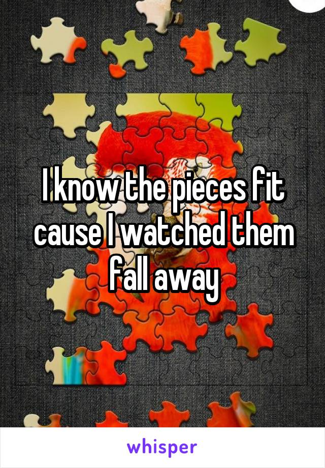 I know the pieces fit cause I watched them fall away
