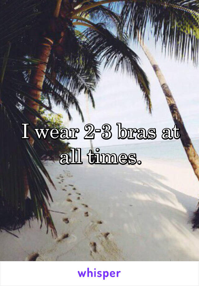 I wear 2-3 bras at all times.
