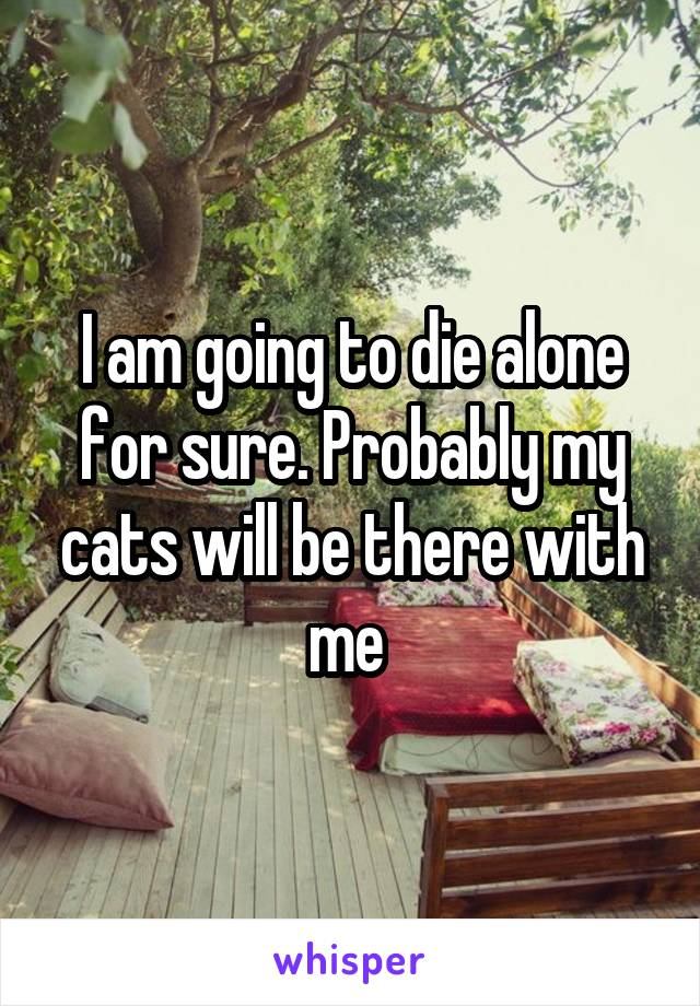 I am going to die alone for sure. Probably my cats will be there with me