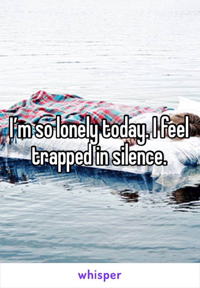I'm so lonely today. I feel trapped in silence.