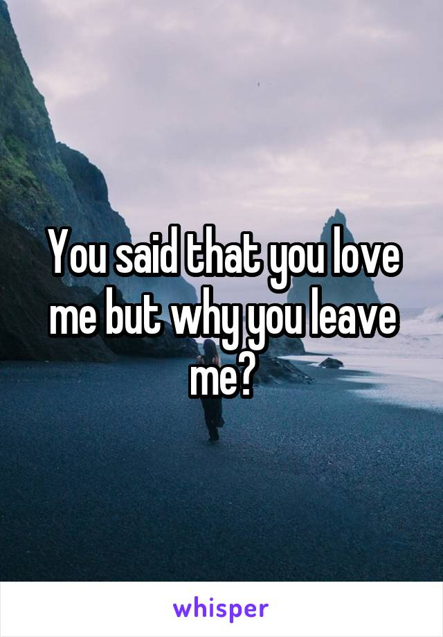 You said that you love me but why you leave me?