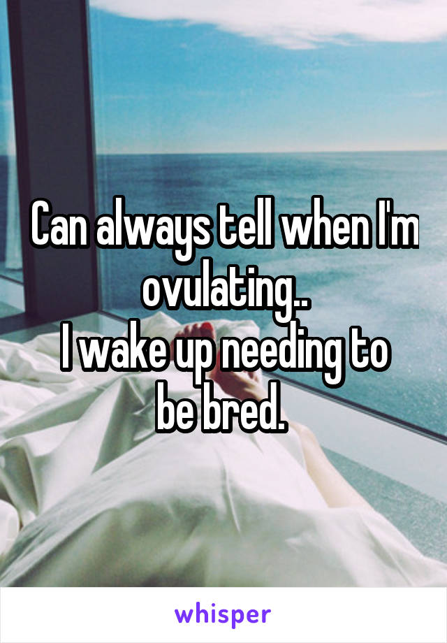 Can always tell when I'm ovulating.. I wake up needing to be bred.