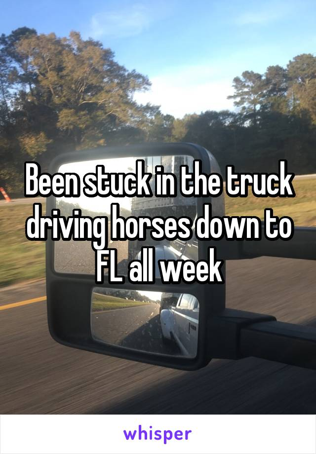 Been stuck in the truck driving horses down to FL all week