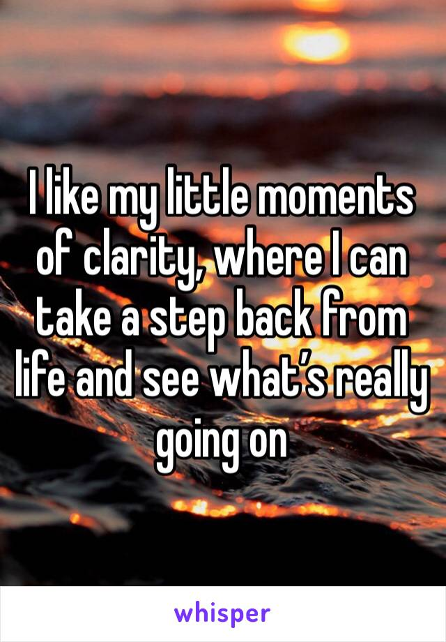 I like my little moments of clarity, where I can take a step back from life and see what's really going on