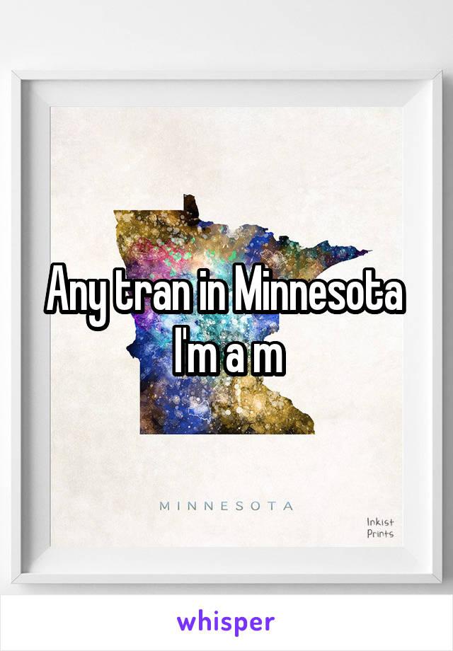 Any tran in Minnesota  I'm a m