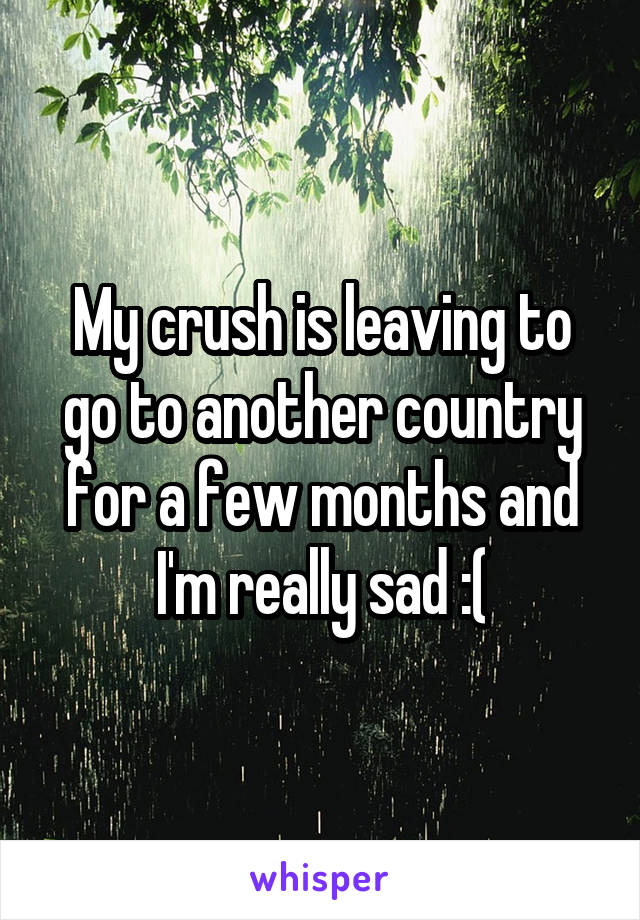 My crush is leaving to go to another country for a few months and I'm really sad :(