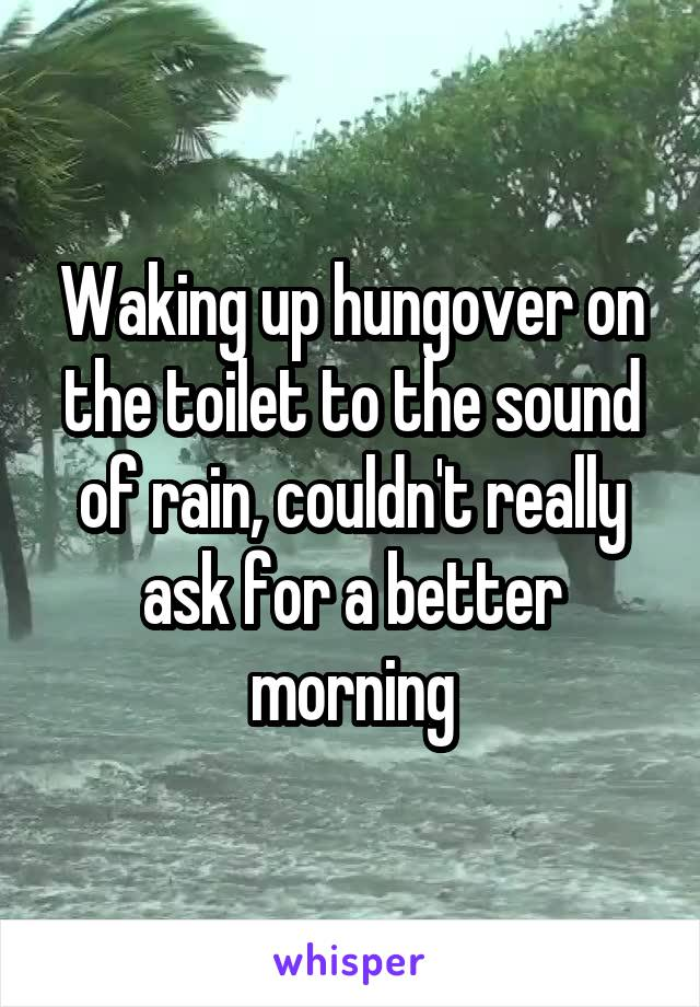 Waking up hungover on the toilet to the sound of rain, couldn't really ask for a better morning