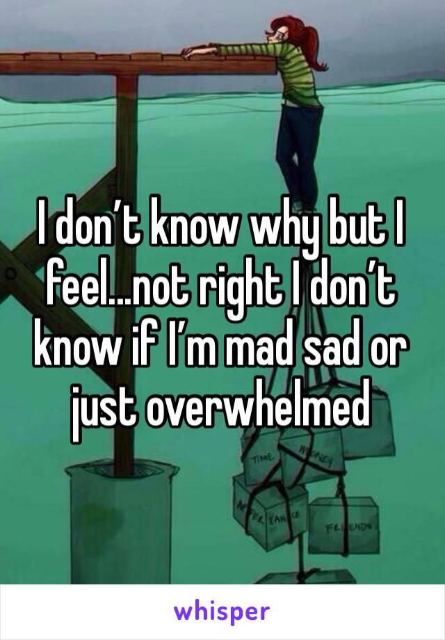 I don't know why but I feel...not right I don't know if I'm mad sad or just overwhelmed