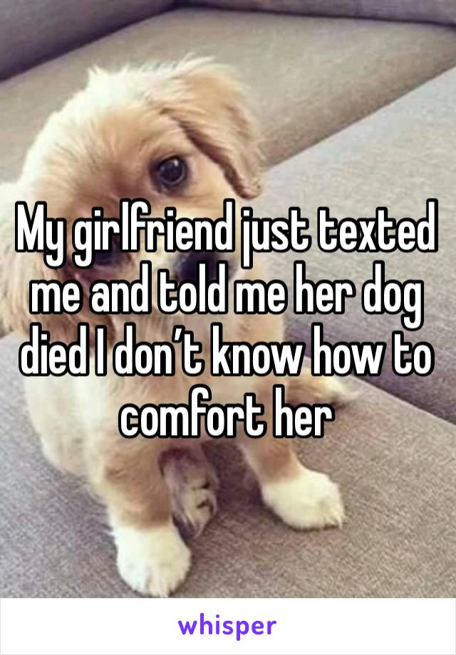 My girlfriend just texted me and told me her dog died I don't know how to comfort her