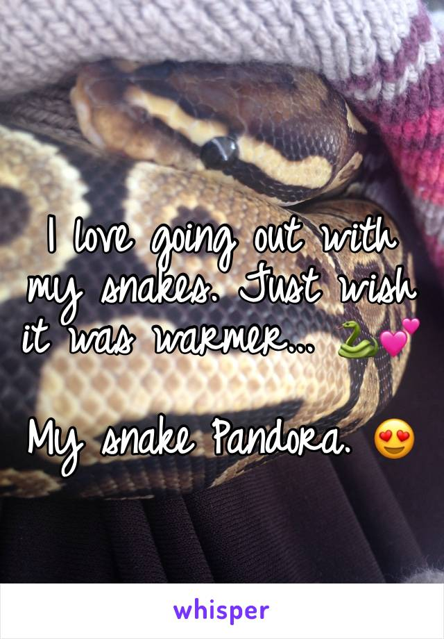 I love going out with my snakes. Just wish it was warmer... 🐍💕  My snake Pandora. 😍
