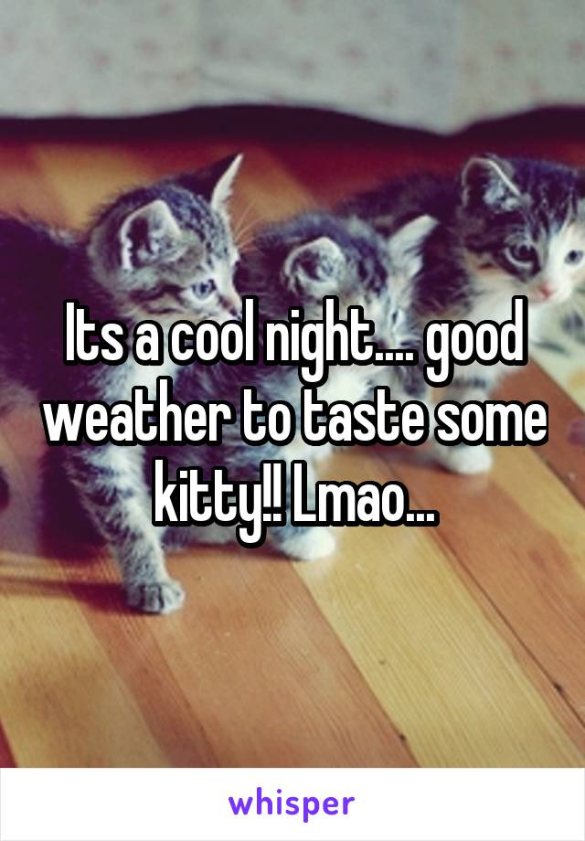 Its a cool night.... good weather to taste some kitty!! Lmao...
