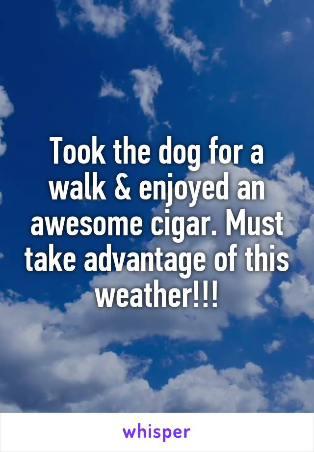 Took the dog for a walk & enjoyed an awesome cigar. Must take advantage of this weather!!!
