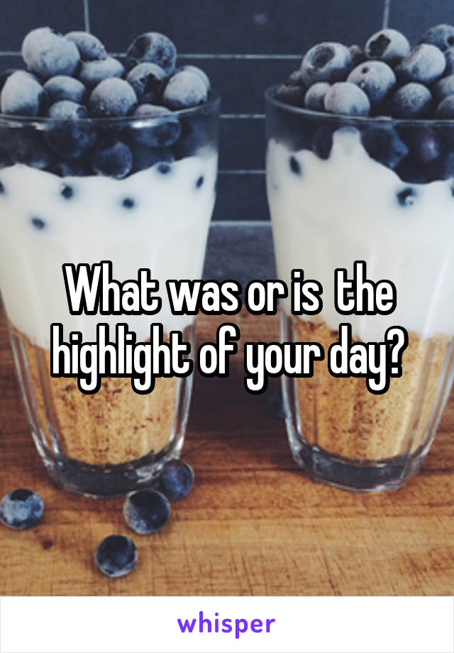 What was or is  the highlight of your day?