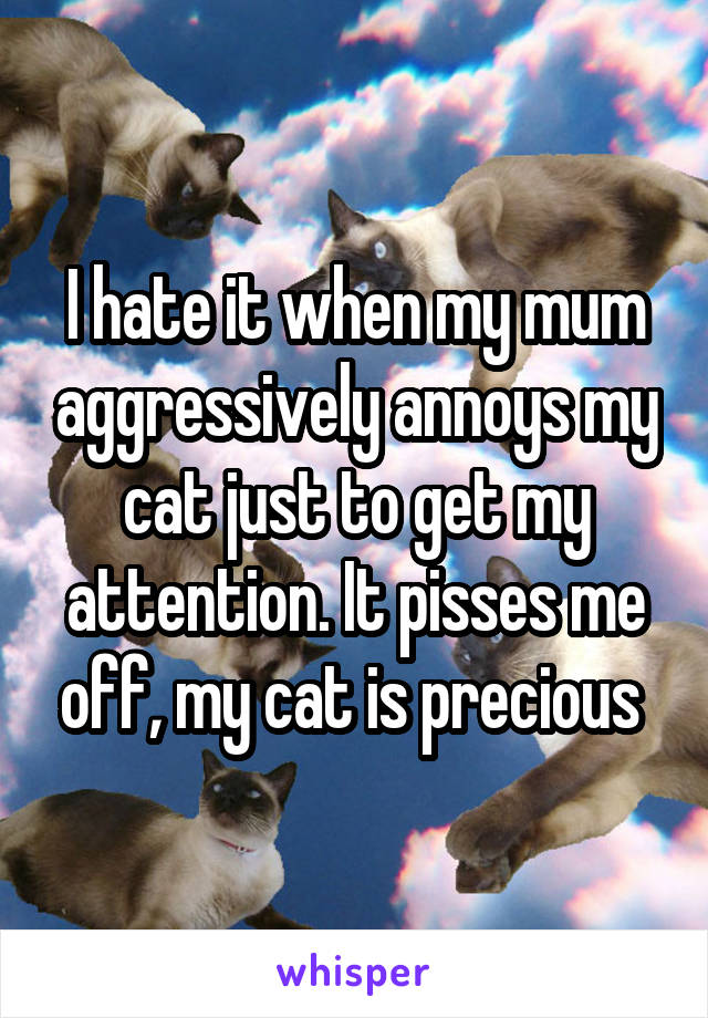 I hate it when my mum aggressively annoys my cat just to get my attention. It pisses me off, my cat is precious