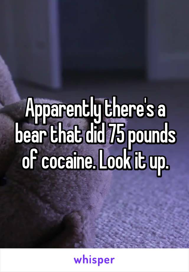 Apparently there's a bear that did 75 pounds of cocaine. Look it up.