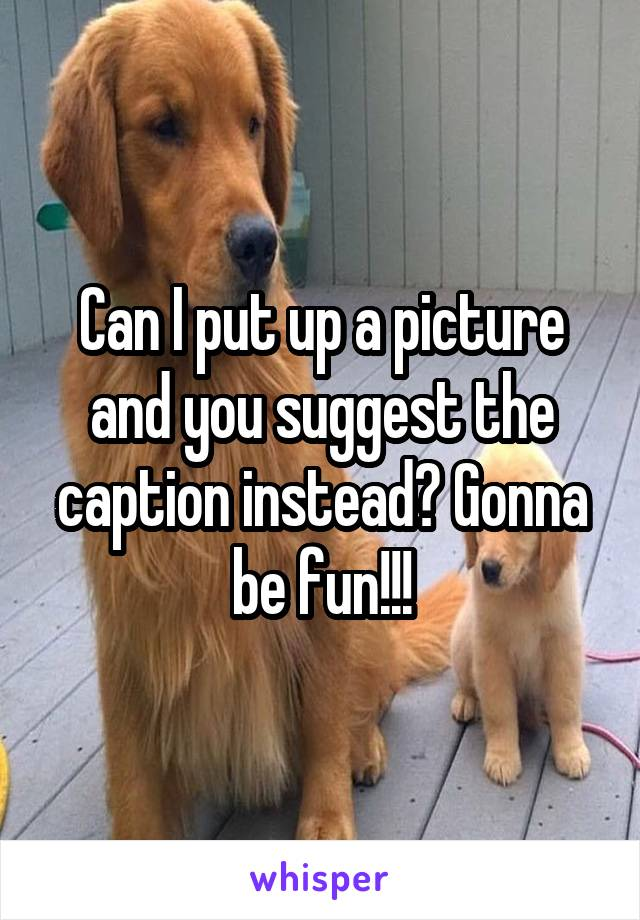 Can I put up a picture and you suggest the caption instead? Gonna be fun!!!