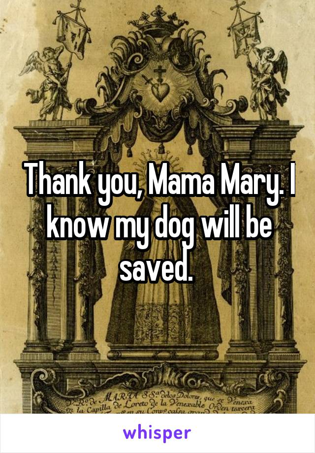 Thank you, Mama Mary. I know my dog will be saved.